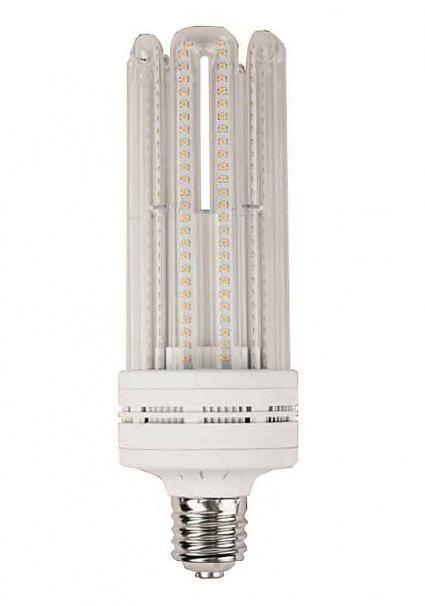 LED BLOOM LAMP