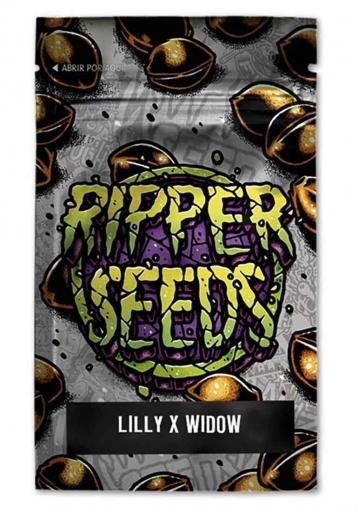 LILLY X WHITE WIDOW