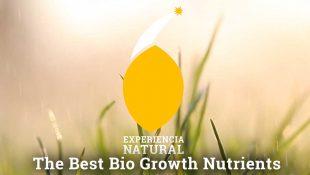 The Best Bio Growth Nutrients
