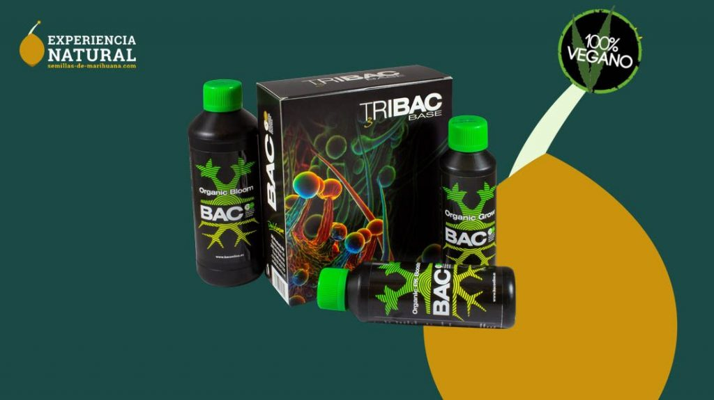 bac best fertilizers