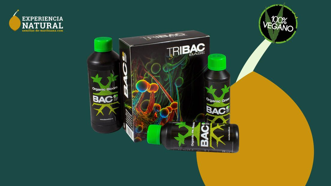 Best marijuana nutrient brands