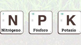 NPK elementos para fertilizar a canábis