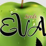 Eva Seeds banco de semillas de marihuana