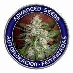 banco de semillas de marihuana advanced seeds