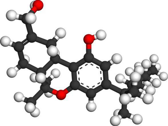 HUcannabinoide