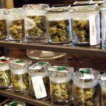Washington legaliza la venta de la marihuana para uso recreativo