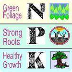 NPK para el cultivo de marihuana
