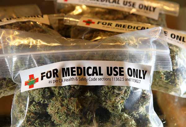 El Cannabis, una planta medicinal