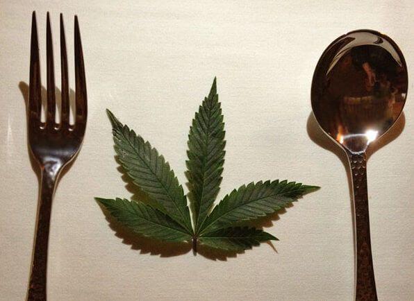 los errores comunes al cocinar con marihuana