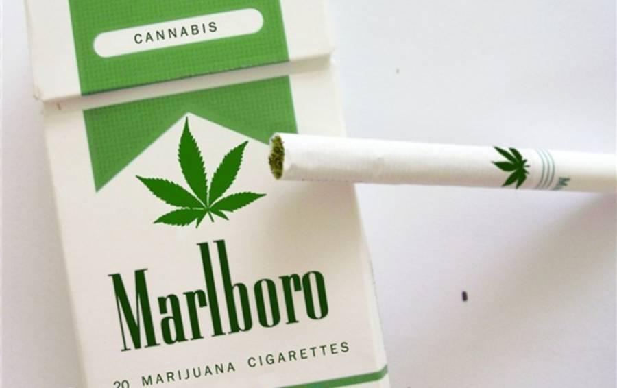 Marihuana y negocio Marlboro