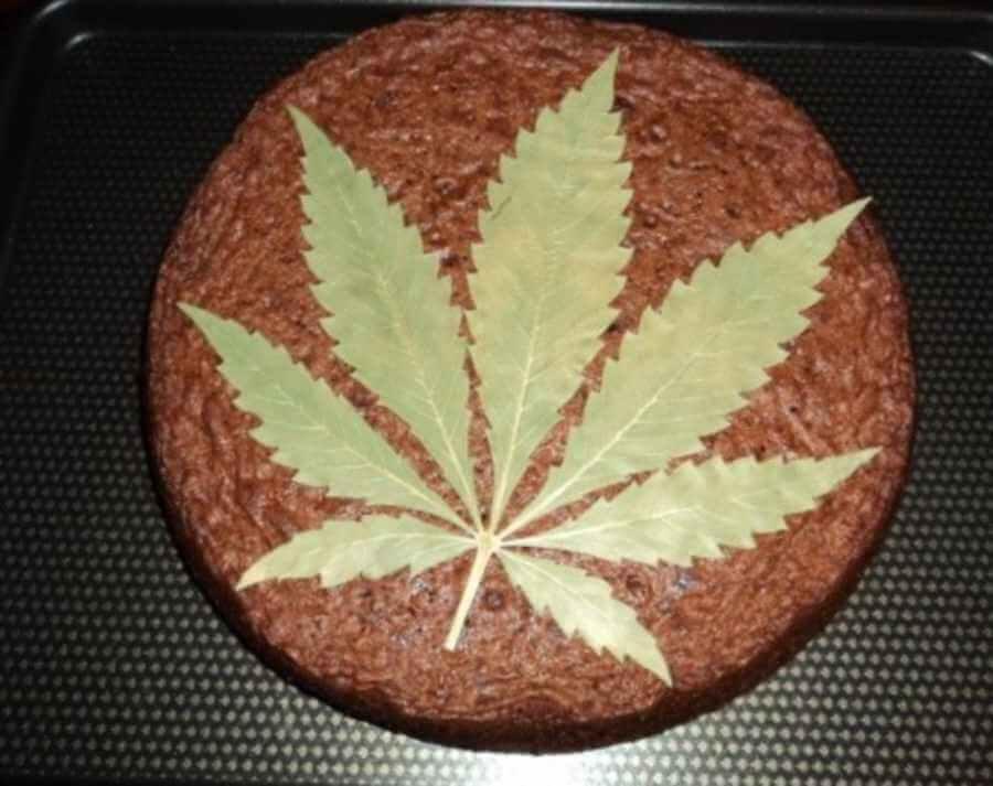 Space Cake, la receta cannábica más internacional