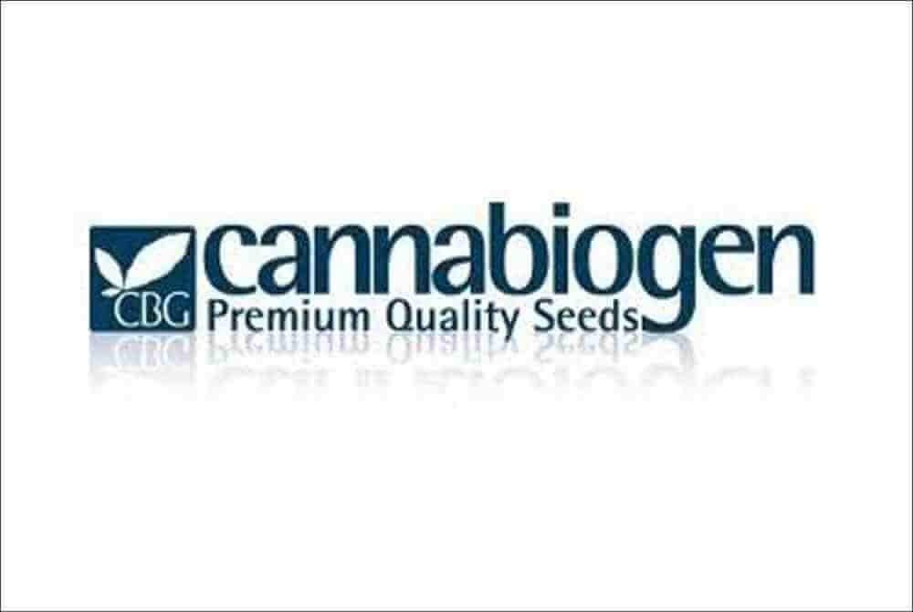 Cannabiogen, el banco de semillas español pionero
