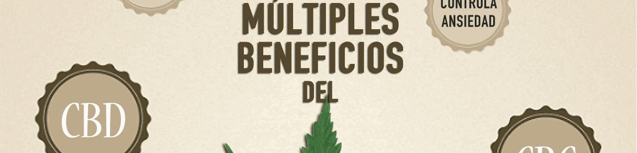 Los beneficios Cannabis infografia