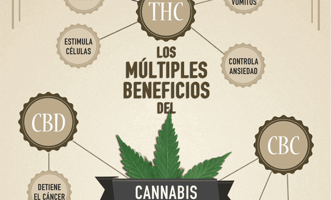 ¿Qué cannabinoides hay en la marihuana y para qué sirven?