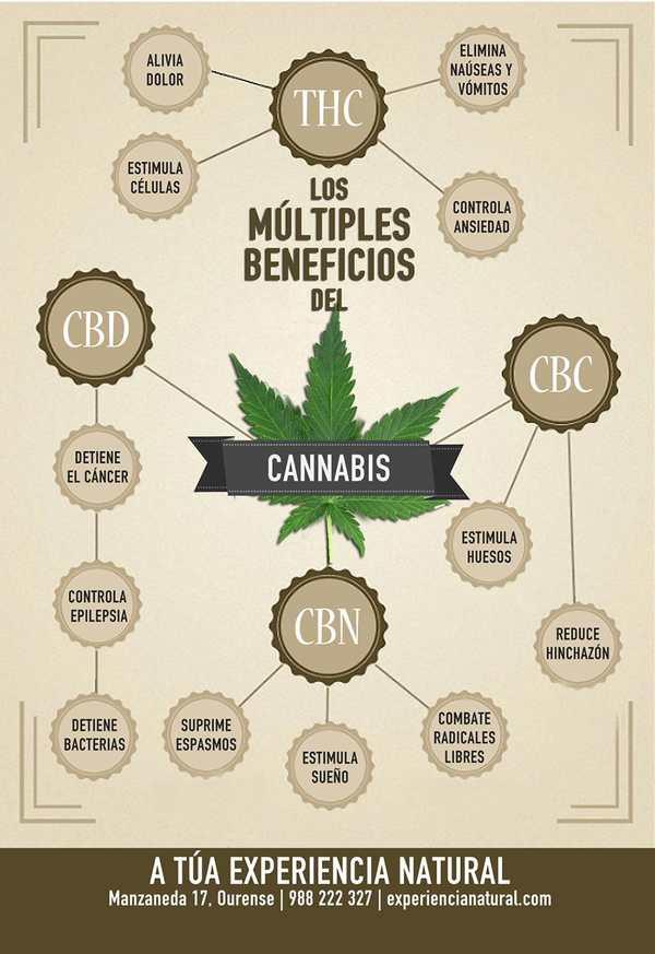 cannabinoides usos y beneficios