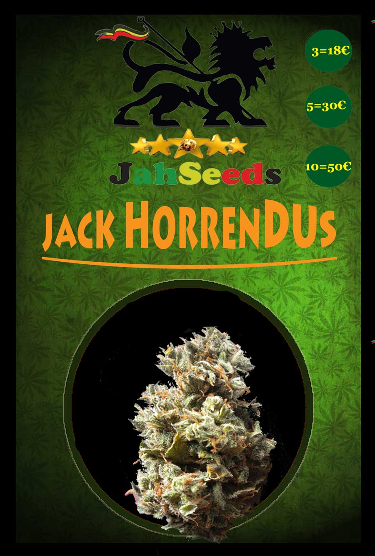 Jack Horrendus