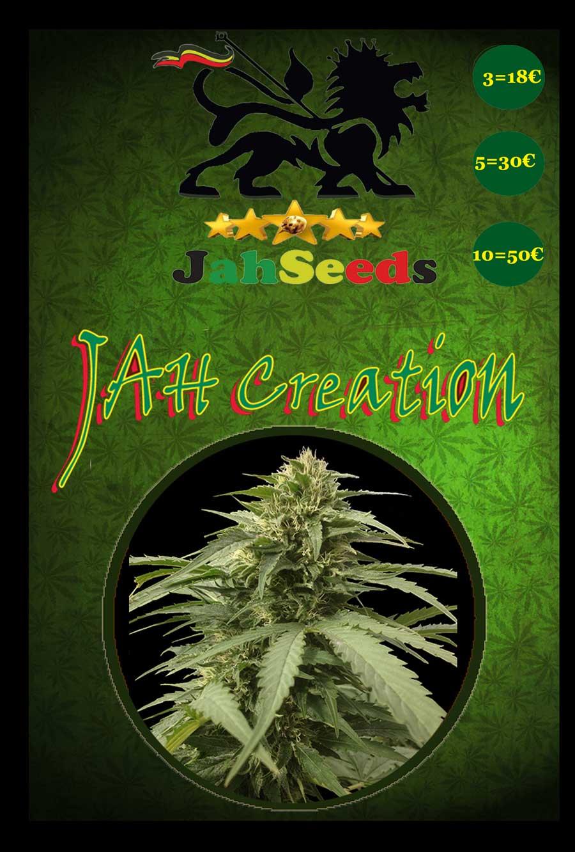 jah creation