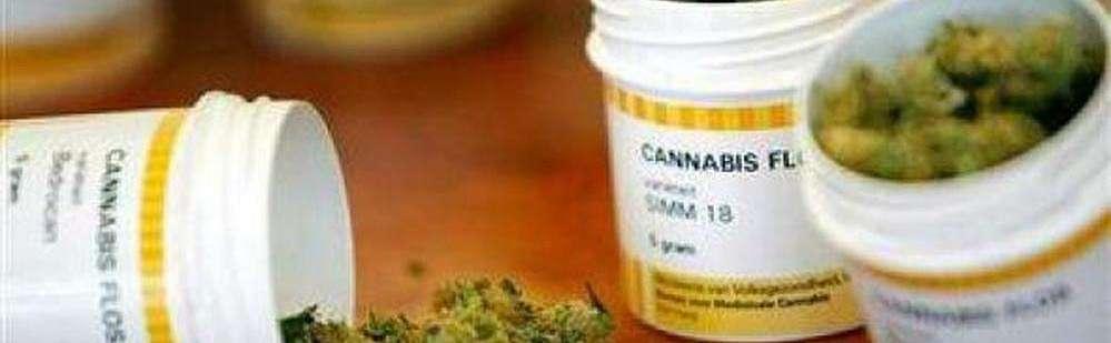 marihuana contra el cancer