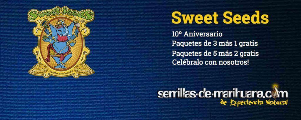 sweet-seeds-semillas-de-marihuana-gratis