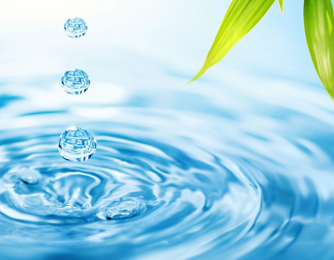 agua y hojas