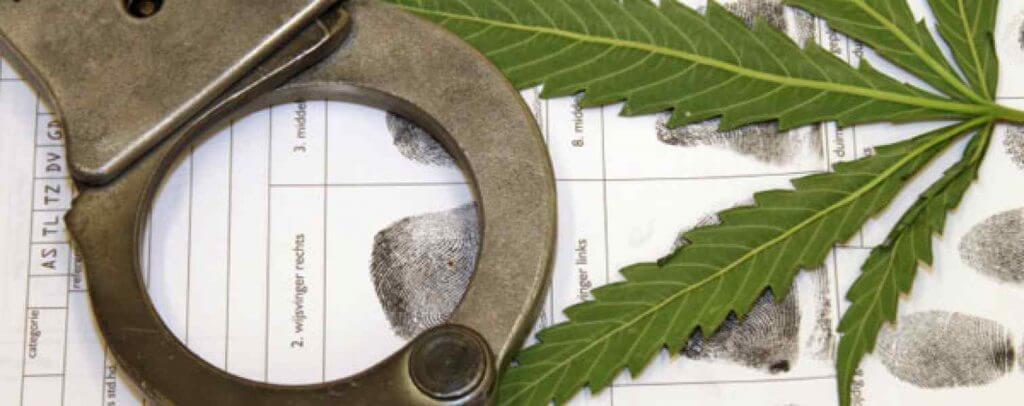 La prohibición del Cannabis. de Jacob Sullum