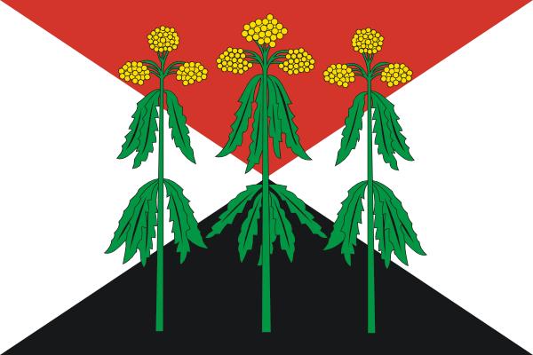 escudo Kimovsky