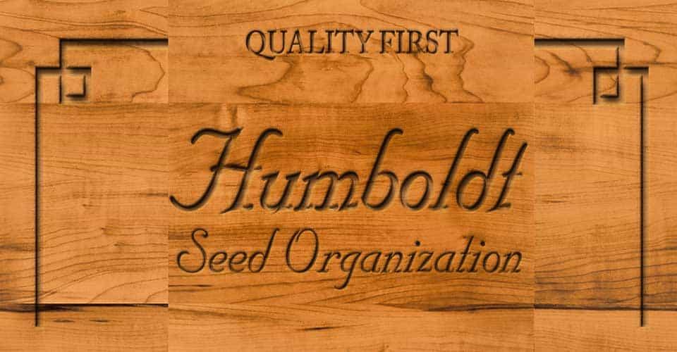 Banco Humboldt Seeds