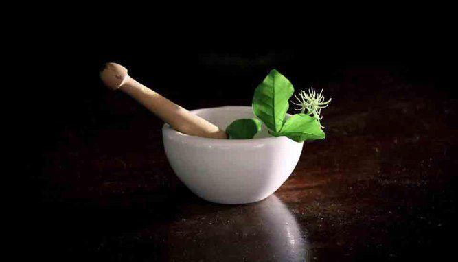 Remedios caseros para la marihuana (plagas y hongos)