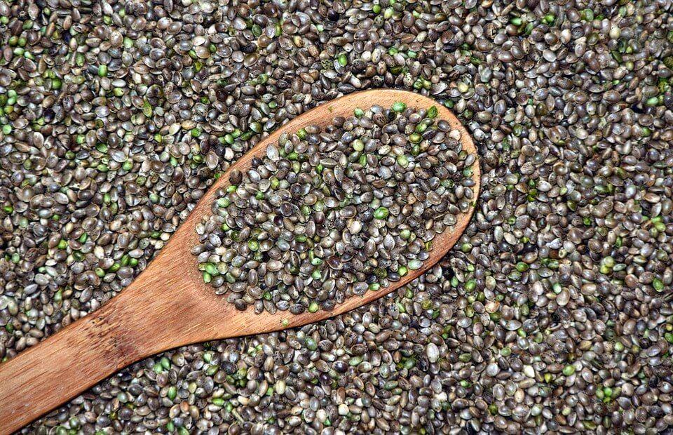 guardar semillas no se hace así