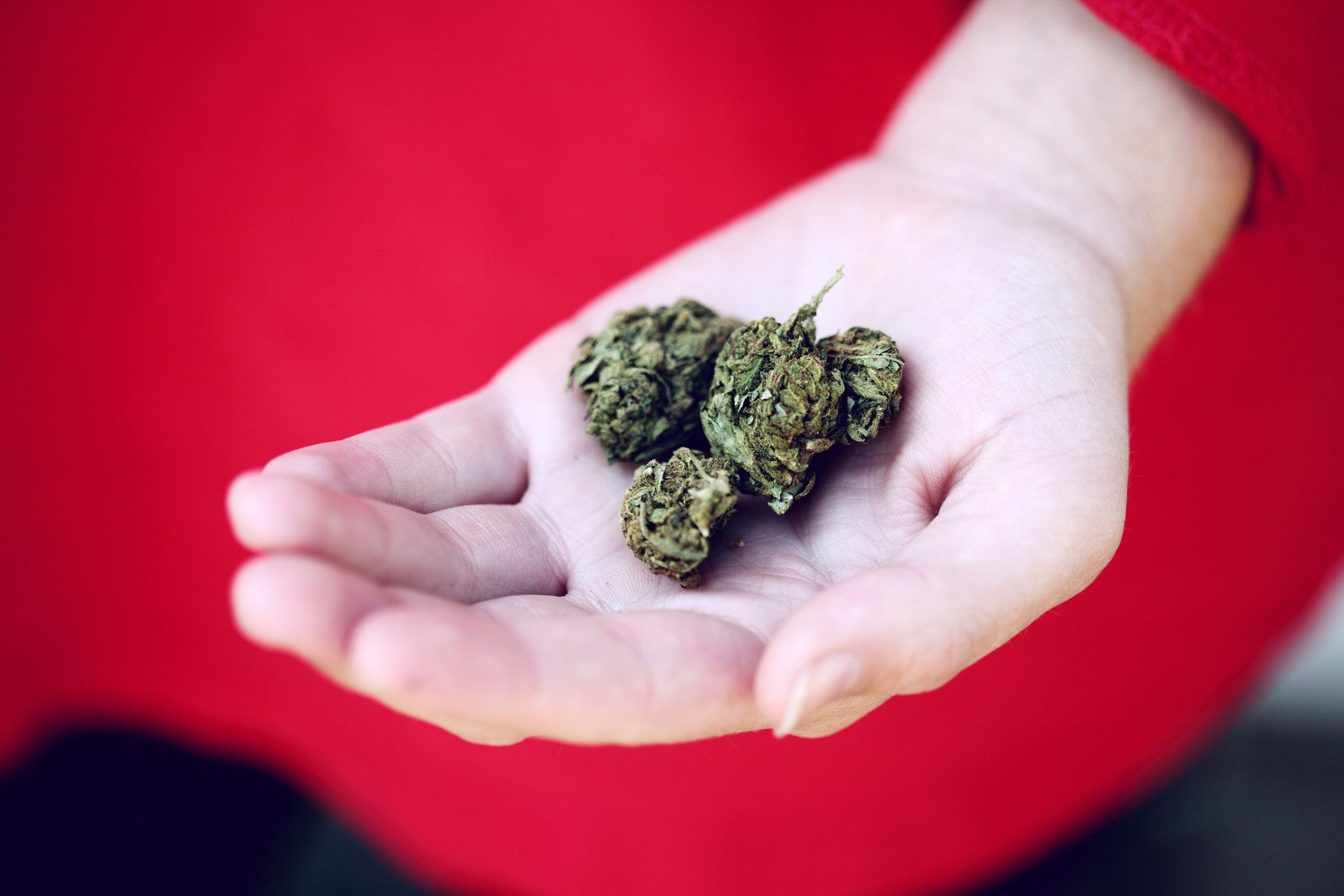psicosis marihuana CBD