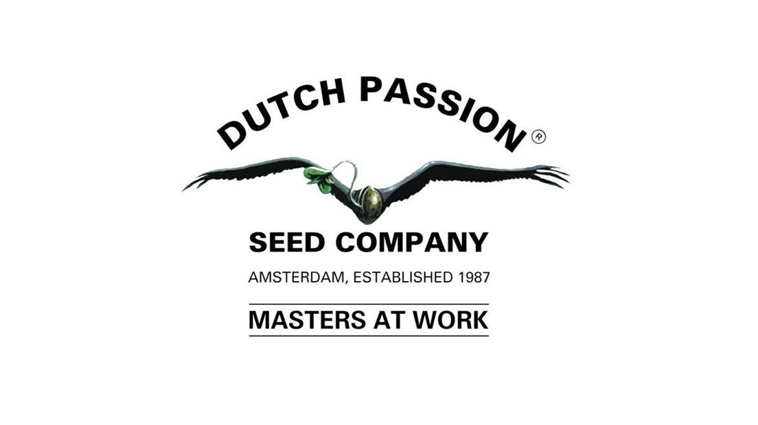 banco de semillas dutch passion