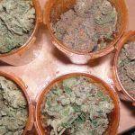 estudios sobre el Cannabis más importantes