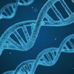 Cannabis y ADN