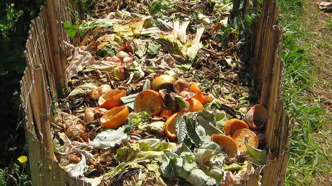¿Cómo hacer tu propio compost casero para Cannabis?