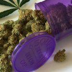 conservación de marihuana