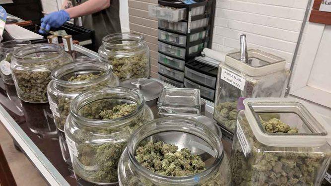 Rehidratar la marihuana