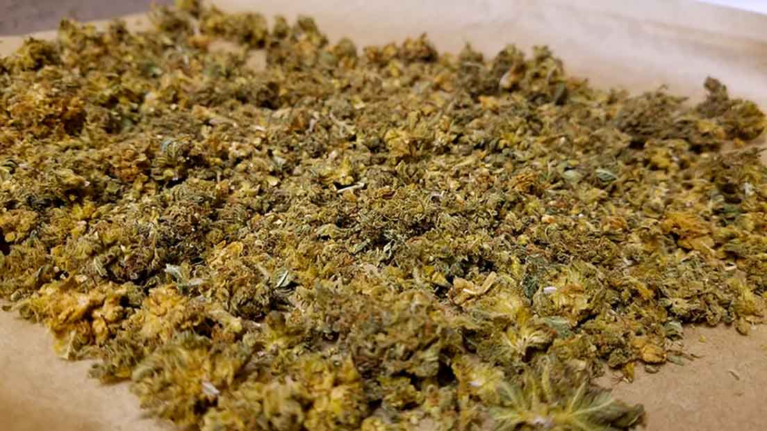 Descarboxilar la marihuana es un proceso fundamental para poder ingerirla y sentir efectos.