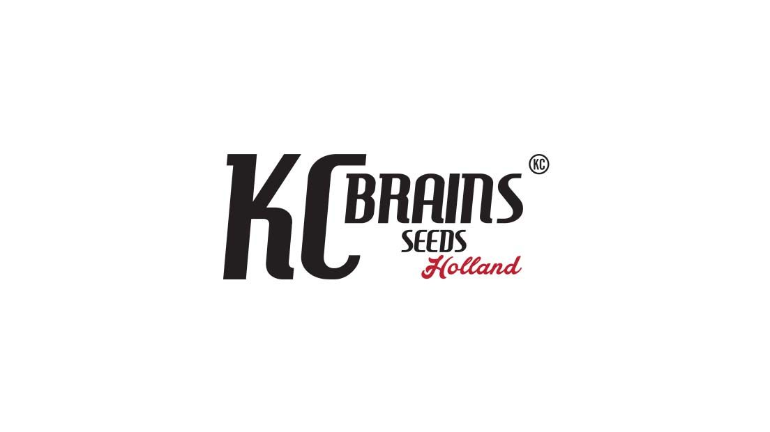 Logotipo del banco de semillas de marihuana KC Brains