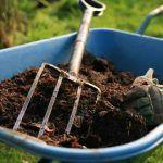 El mantillo es uno de los mejores protectores del cultivo orgánico de marihuana y para cultivar marihuana en exterior