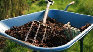 El mantillo es uno de los mejores protectores del cultivo orgánico de marihuana