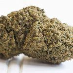 Los moonrocks son cogollos de marihuana recubiertos en aceite de marihuana y polen.