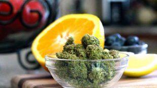 Los terpenos determinan en gran medida el sabor de la marihuana.