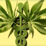 La historia de la marihuana medicinal es muy controvertida
