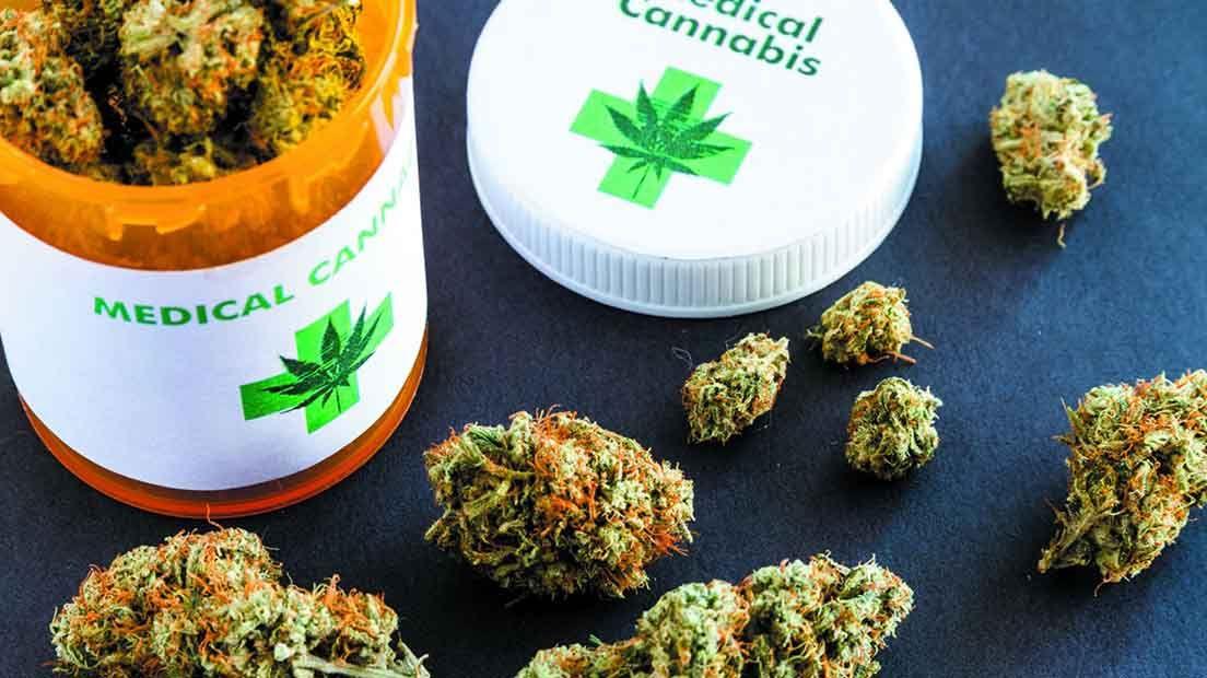 Descubre la historia de la marihuana medicinal