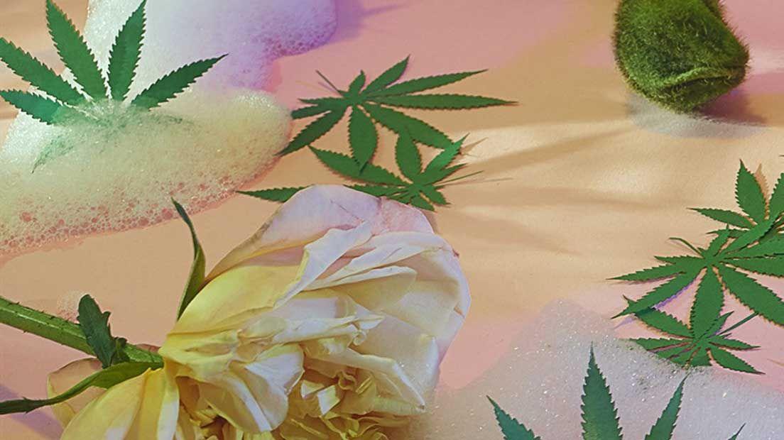 Bañarse en Cannabis puede ser un buen hábito si sabes cómo hacerlo.