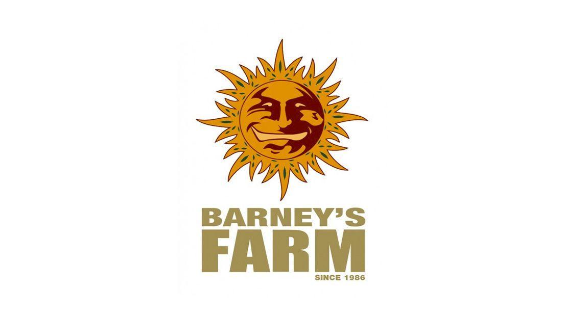 Los mejores bancos de semillas de marihuana 2020: Barney's Farm.