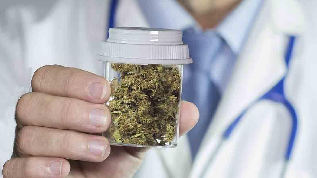 La marihuana y el sistema endocrino se complementan.