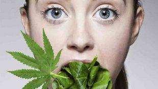La marihuana y pérdida de peso no son incompatibles.