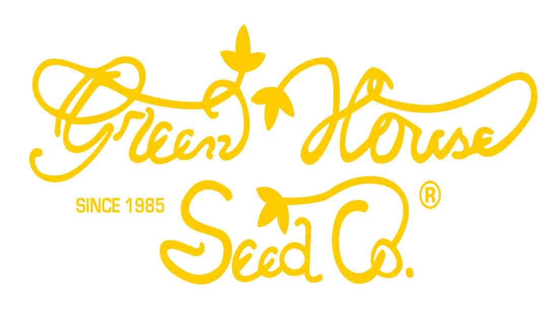 En Greenhouse Seeds son uno de los mejores bancos de semillas holandeses con variedades de todo el mundo.