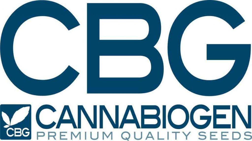 Cannabiogen es un banco de semillas de España con genéticas exclusivas.